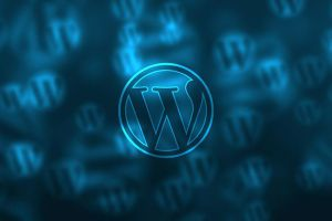 November 2019 – WordPress plug-in security update